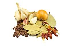 Laurel, onion, garlic, peper. Spicy seasonings isolated on white Stock Photos