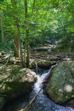 Laurel Snow State Natural Area Royalty Free Stock Images