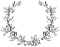 Free Laurel Wreath Royalty Free Stock Photo - 37039905