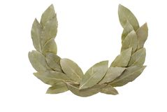 Laurel wreath. Arranged laurel wreath isolated on white background Stock Image