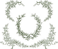Laurel wreath and branches. Vector image of the laurel wreath and branches with ribbons stock illustration