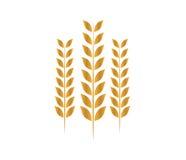 Laurel Wreath Icon Design Image libre de droits