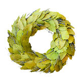 Laurel wreath isolated Royalty Free Stock Photos