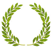 Laurel wreath and laurel. Isolated on white Stock Photo