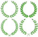 Laurel wreath. Vector illustration background vector illustration