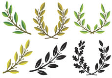 Laurel wreaths and branches royalty free illustration