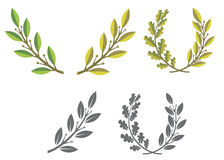 Laurel wreaths and branches Royalty Free Stock Photos
