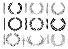 Laurel Wreaths and Branches Vector Collection Royalty Free Stock Image