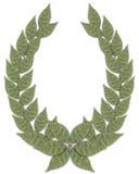 laurel zielone royalty ilustracja