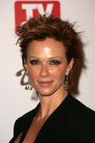 Lauren Holly,Hollies Stock Photography