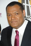 Laurence Fishburne Stock Images
