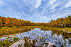 Laurentian Lake Conservation Area Royalty Free Stock Photography