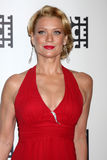 Laurie Holden Royalty Free Stock Image