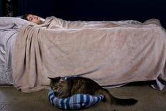 Laute Haus-Katze Lizenzfreies Stockbild