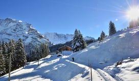 Lauterbrunnen, ¼ MÃ rren в горах рождества снега Швейцарии Стоковая Фотография