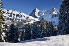 Lauterbrunnen, ¼ MÃ rren в горах рождества снега Швейцарии Стоковое фото RF