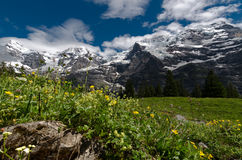 Lauterbrunnen Swizerland Kleine Scheidegg Стоковая Фотография