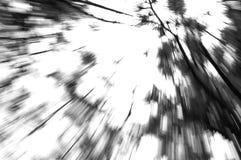 Lautes Summen in Richtung zum Himmel Lizenzfreie Stockfotografie