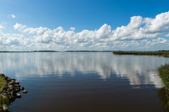 Lauwersmeer National Park royalty free stock image