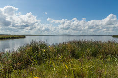 Lauwersmeer National Park stock photography