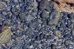 Lava Basaltic Rock seco imagem de stock