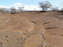 Lava Bed with Native Hawaiian Petroglyph Carvings Royalty Free Stock Photography