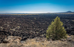 Lava Beds And Lava Flow Area Stock Image