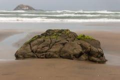 Lava boulder on Muriwai beach Royalty Free Stock Photos