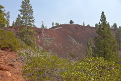 Lava Butte forest and surrounding area. Stock Photos