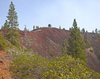 Lava Butte forest and surrounding area. Royalty Free Stock Photos