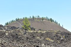 Lava Butte Royalty Free Stock Photography