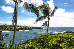 The lava coast at Wai Anapanapa in Maui, Hawaii Stock Photo