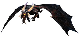 Lava dragon. A horned dragon flying in to attack Stock Image