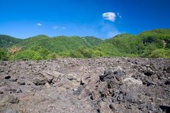 Lava Field. Caused by volcanic activity, Etna, Sicily, Italy Stock Photography