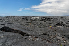 Lava Field on Big Island of Hawaii Royalty Free Stock Photos
