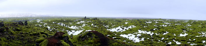 Lava field. Covered in moss in Iceland Eldhraun Royalty Free Stock Photography