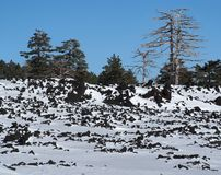 Lava field covered with snow on Etna volcano, Sici Royalty Free Stock Photo