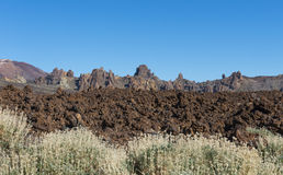 Lava Field El Teide avec des arbustes Photos stock
