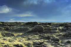 Lava field at Eldhraun Royalty Free Stock Photos