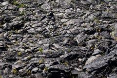 Lava field Royalty Free Stock Photo