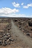 Lava field in Hawaii Royalty Free Stock Image