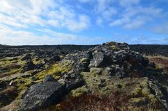 Lava field with black rocks and green moss stock images