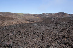 Lava field, Isabela Island, Galapagos. Lava fields on the flank of Sierra Negra, Isabela Island, Galapagos, with different colours of lava showing flows of Stock Photo