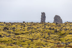 Lava field with lush green moss and rugged cliffs on seashore Stock Photo