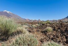 Lava Field med El Teide Royaltyfria Foton
