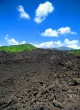 Lava field on Mt. Etna royalty free stock photo