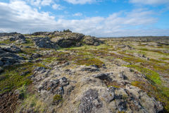 Lava field, Reykjanes peninsula. Iceland Stock Photos