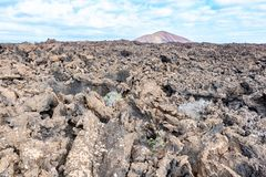 Lava field and tourist road trail to vulcano Caldera Blanca, Lanzarote, Canary Islands, Spain.  stock images