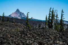 Lava Field, Trees And An Old Volcano Royalty Free Stock Images
