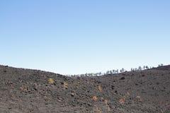 Lava Fields Stock Foto